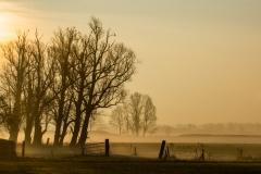 2019-02-23-Leusbroekerweg-002